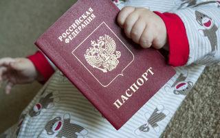 Гражданство ребенка рожденного в россии в 2020 году: пошаговая инструкция