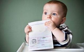 Гостевая виза в германию в 2020 году по приглашению: документы