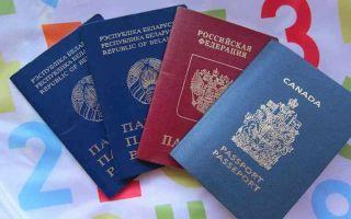 Двойное гражданство беларусь-россия 2020: возможно ли получить