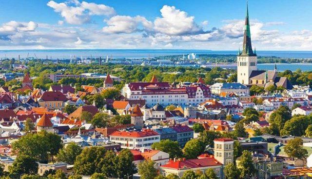 Как получить гражданство Эстонии россиянину: основания и процедура