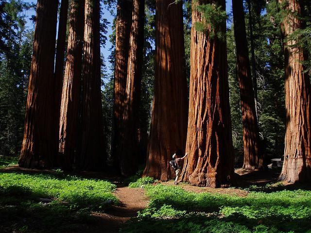 ТОП-10 самых интересных мест Калифорнии