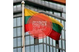 Работа в Литве для русских, белорусов и украинцев: вакансии 2020
