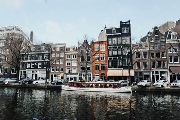 Эмиграция в Нидерланды: как переехать на ПМЖ из России, способы иммиграции, условия переезда, требования и прочее
