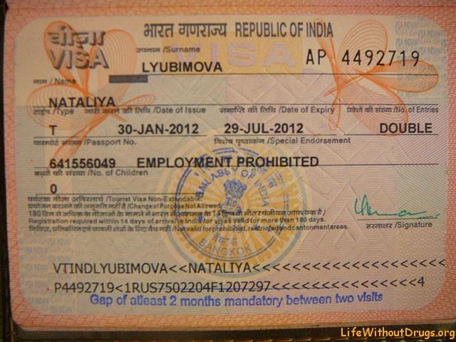 Виза в Индию для россиян в 2020 году: как получить самостоятельно