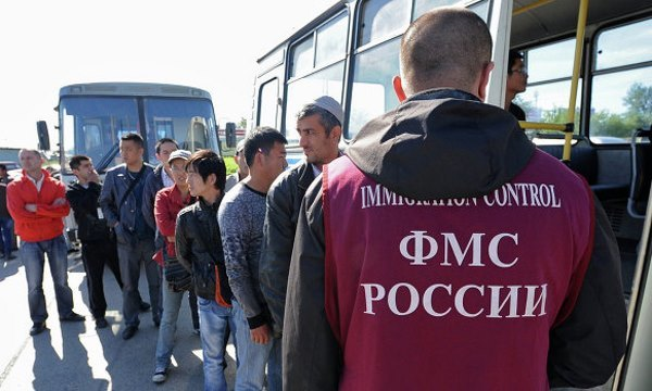 Особенности миграционных процессов в России: анализ, причины, роль государственного управления