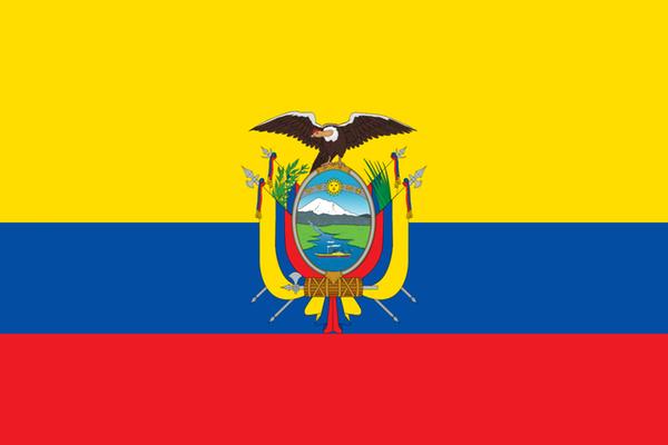 Виза в Эквадор для россиян в 2020 году: самостоятельное заполнение