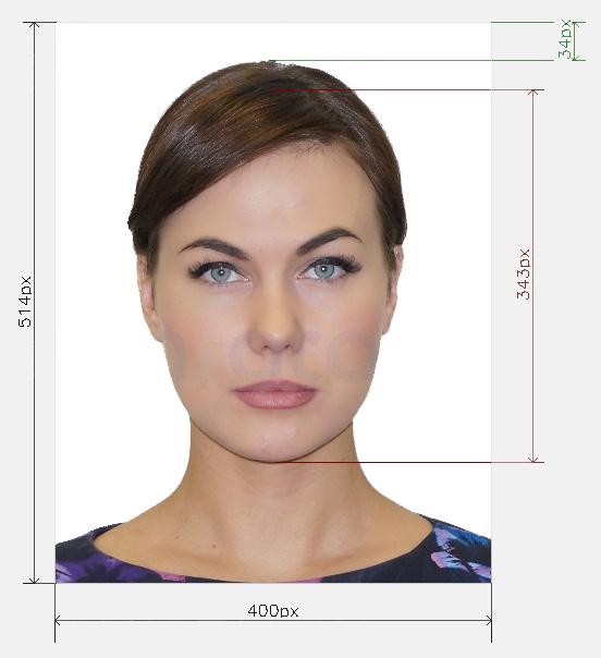 Виза в Сингапур для россиян в 2020 году: самостоятельное оформление