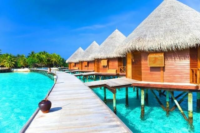 Где отдохнуть на море в январе 2020 недорого: 15 пляжных мест