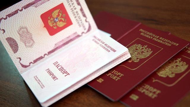 Второй загранпаспорт при наличии первого в 2020 году: как получить
